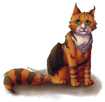 Torheit the student by Torheit-die-Katze