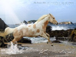 Kaiulani by adverbial-spectra