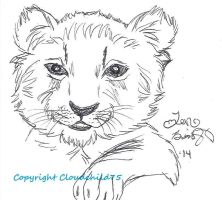 Baby lion cub by MaguschildCloud