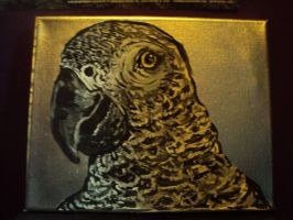 African Grey Parrot by lightningstrikeart