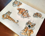 Tiger sketches by FlashW