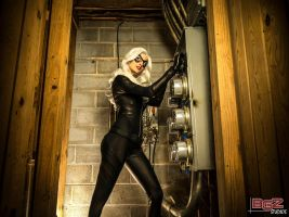 Black Cat Cosplay - breaking in.. by bgzstudios