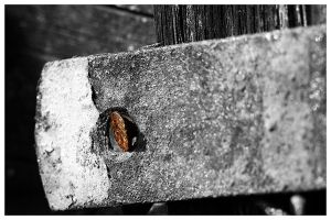 ...NAIL... by MartenD