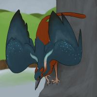 King Fisher Gryphon by Athenas-Owl