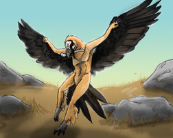 Bearded Vulture by lythre114