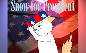 Snow For President by Dawnshade1