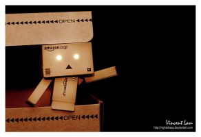 Danbo says Hello World by NightSheep