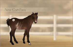 HIP #8 - New Coet Pony Adoptable by Yumpy