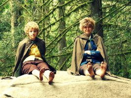 A Took and a Brandybuck by mindless-cosplay