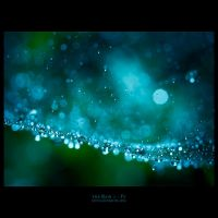 the Rain 1 by yv