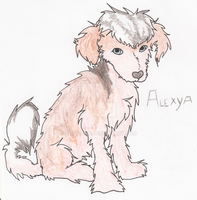 Alexya the PP crestie by AixaRawr