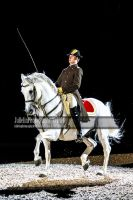 Spanish Riding School 35 by JullelinPhotography