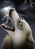 Cries in the Storm by Lynvana