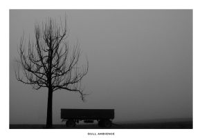 dull ambience by fritsch
