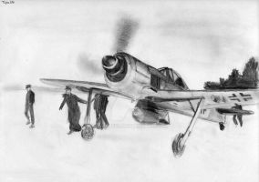 Fw-190 Russian Front by Taipu556