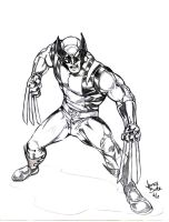 Wolverine by Jimmy-B-Deviant