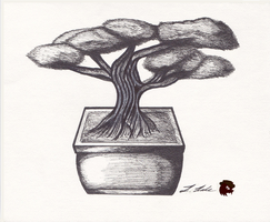 Bonsai Tree in Ink by FireheartTheInferno