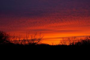 Sunset 3-11-15 by badchess