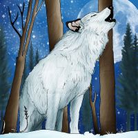 White Wolf by charligal