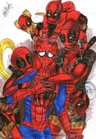 SpiderPool by R1sa