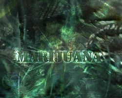 My Marijuana v2 by jerzey