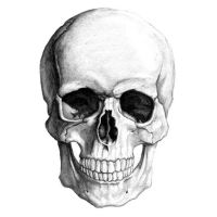 skull illustration by yungtyrant