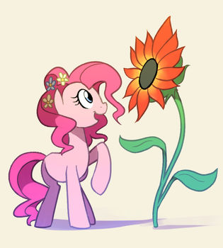 Red Sunflower by Karzahnii