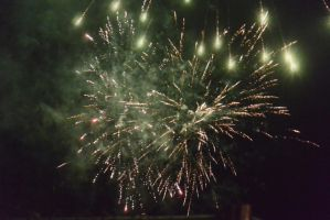 2014 Fourth of July Fireworks 24 by Miss-Tbones
