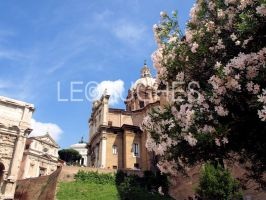 Springtime in the Forum by lehPhotography