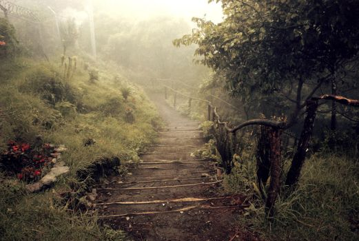 Stairways to Heaven by afermin