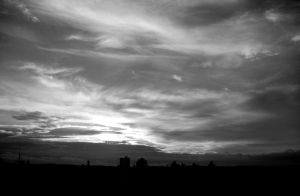 grey impressions of dusk IV by little-one-girl
