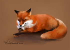 The Fox by Blakravell