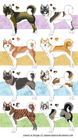 Akita adoptables-Batch 1_Auction (on hold) by Aquene-lupetta