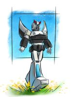 Random Prowl by The-Starhorse