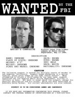 Terminator Wanted Poster by codebreaker2001