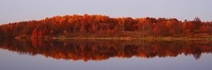 Autumn Reflections by tleach0608