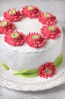 Gerbera cake by kupenska