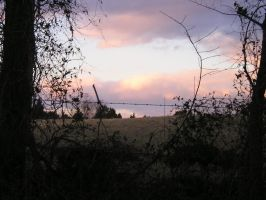 Country Eve by wickedlady