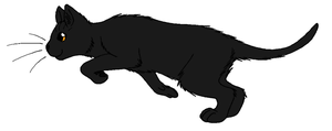 ThunderClan - Hollytuft by WildpathOfShadowClan