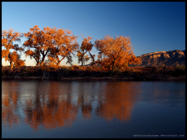 Reflections of Autumn by MadejyalookGraphics