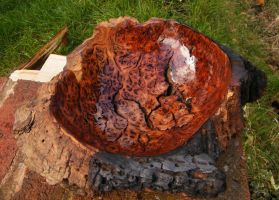 Oak Burr Bowl - inside by tree-gypsy