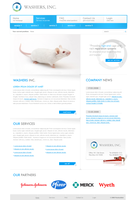 Website proposal WASHERS, INC. by pixelosion