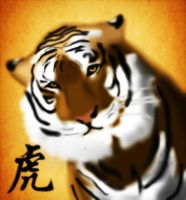 Tiger of the china by tcwoua