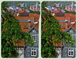 The roofs of Blankenburg 3D ::: Cross-View HDR by zour