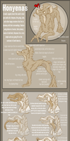 Honyena Species Sheet! by SucioPerro