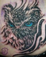 Owl Face Rib Tattoo done by Sean Ambrose by seanspoison