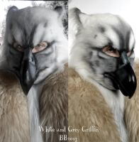 White and grey Griff being worn by Magpieb0nes