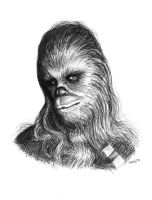 Chewbacca by Practicecactus