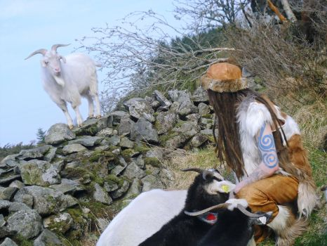 Half-Goat among the Goats by Half-Goat