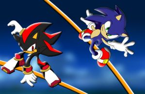 Sonic vs. Shadow Grind Race 2 by ShadicX